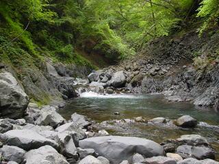 トボトボと林長沢へ入っていく。 森が豊かだと水量も豊か? 渇水気味のはずだけど、まずまずの水量だ